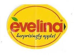 Evalina Full Pc Game Crack